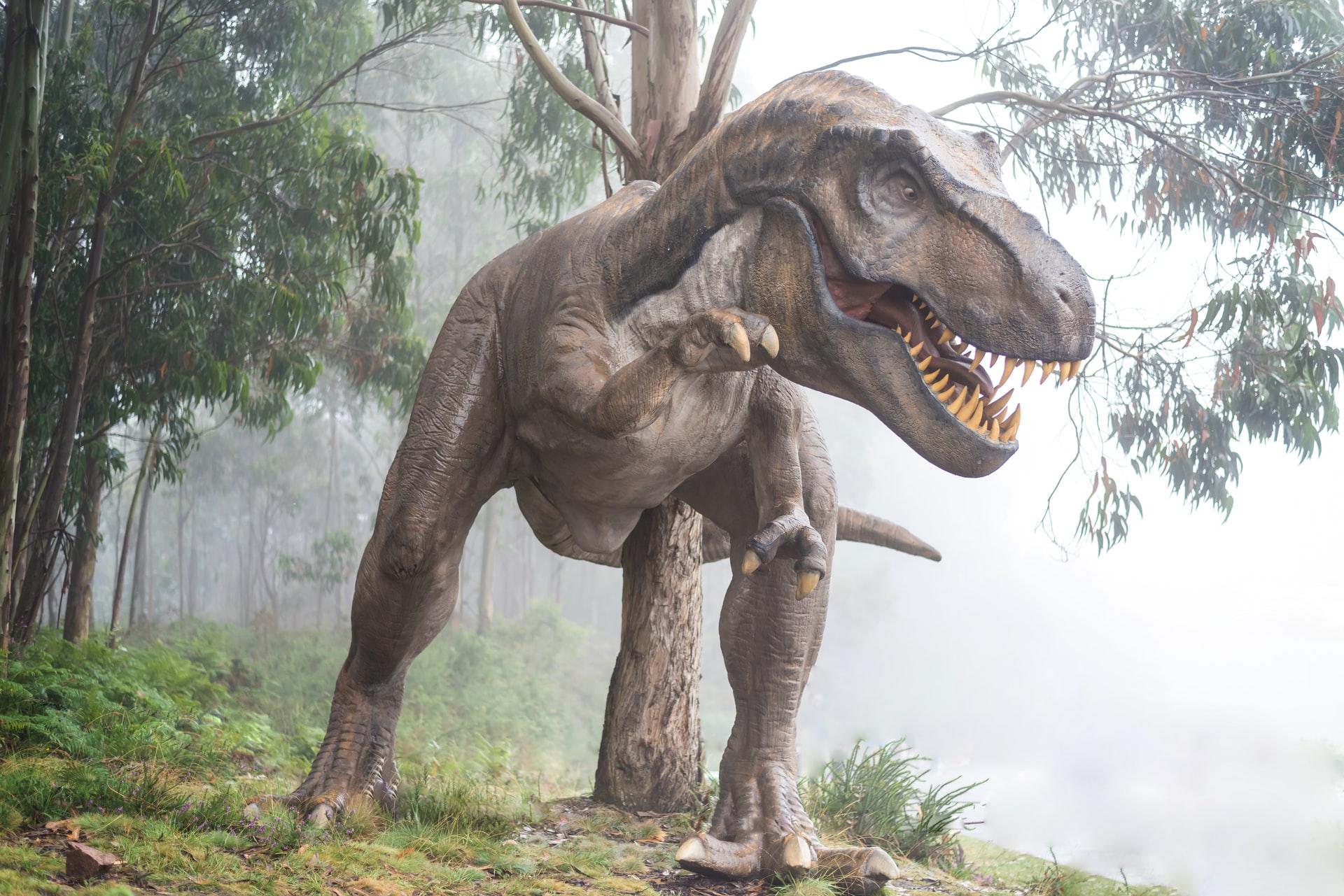 """Será que sou um """"dinossauro"""" na internet?!"""